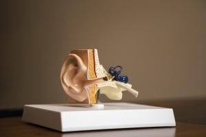 Ohrenstäbchen